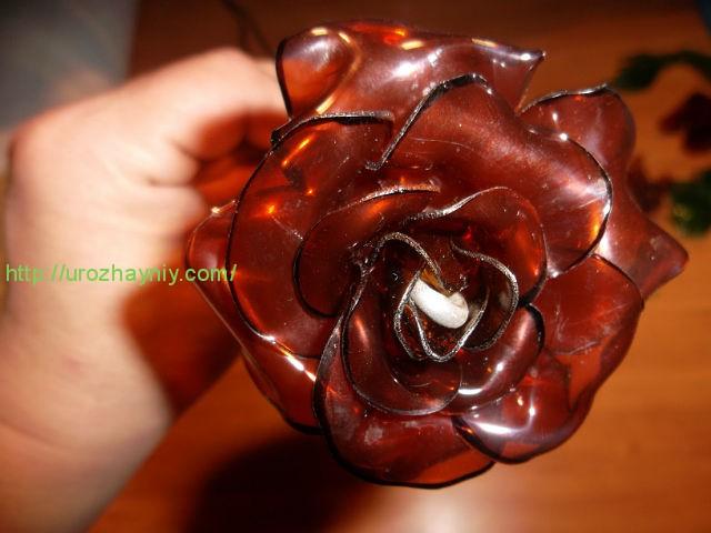 Розы из пластиковых бутылок своими руками мастер класс видео