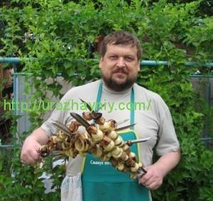 А. Тюлюкин-Вегеринский