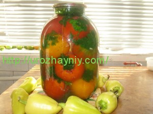Консервированные помидоры с чесноком и петрушкой