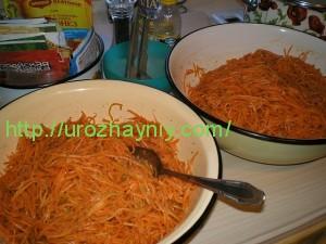 Морковка по-корейски на зиму