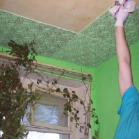 Расписной потолок