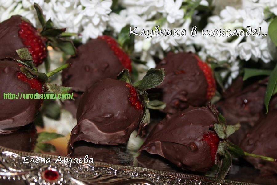 Клубника у шоколаде
